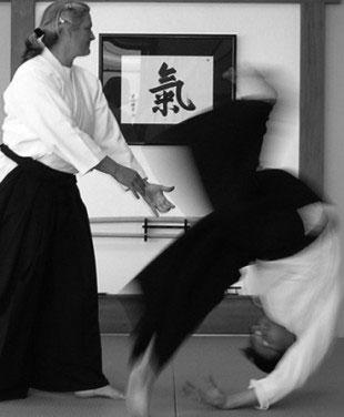 aikido modena